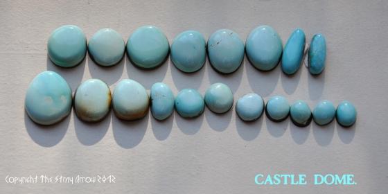 CastleDomecabgroup1