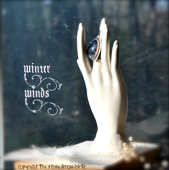WinterWindsmodeled